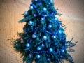 Kompozycje, stroiki, choinki na Boże Narodzenie 2015